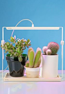 Lampada per fiori e piante Quadra