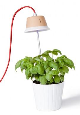Lampada per fiori e piante Cynara
