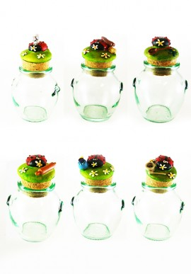 Six piece spice jar